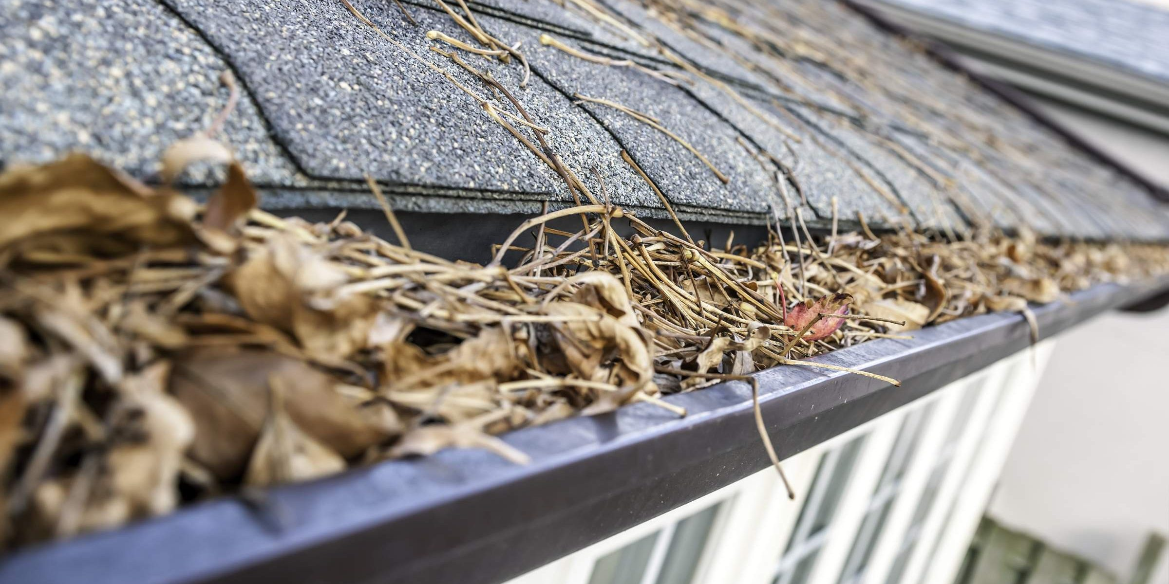 clogged gutter needs cleaning